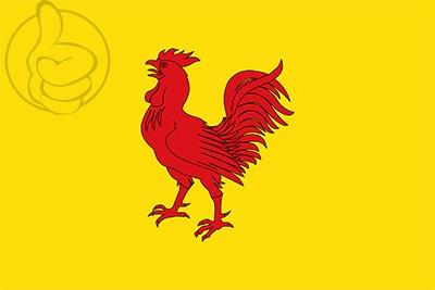Bandera Gallifa