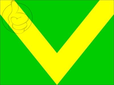 Bandera Drapeau vert chevron jaune