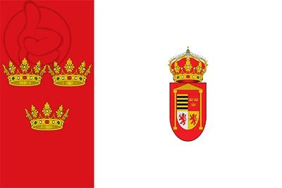 Bandera Diego del Carpio