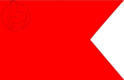 Bandera Bravo