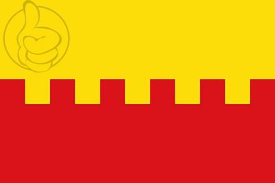 Bandera Narros de Saldueña