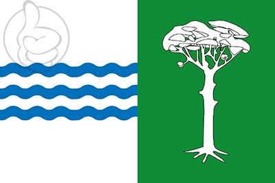 Bandera Pedro Rodríguez
