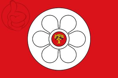 Bandera Salas Altas
