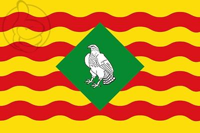 Bandera Sant Feliu de Buixalleu