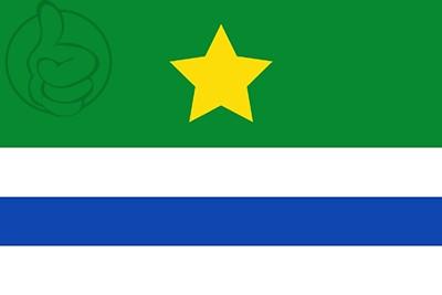 Bandera Vega de Santa María