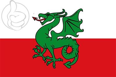 Bandera Navès