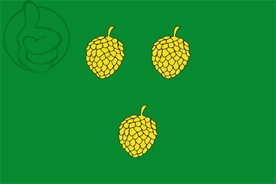 Bandera Pinell de Solsonès