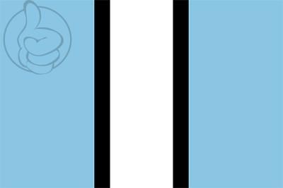 Bandera Vallbona de les Monges