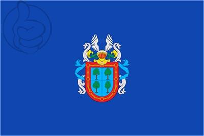 Bandera Barañáin