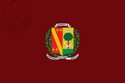 Bandera Amorebieta-Etxano
