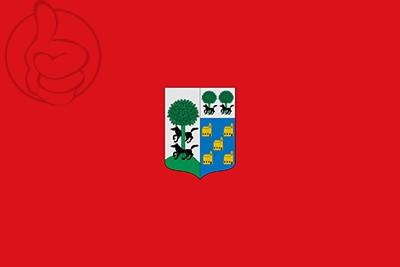 Bandera Busturia