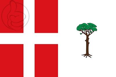 Bandera Espeja de San Marcelino