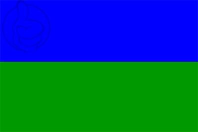 Bandera Bareyo