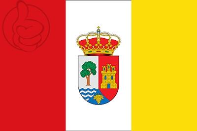 Bandera Castrillo de la Vega