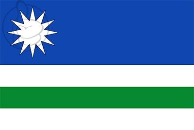 Bandera Renedo de la Vega