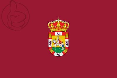 Bandera Sahagún