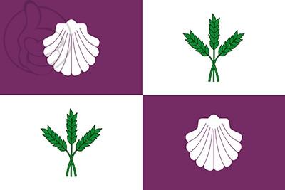 Bandera El Burgo Ranero