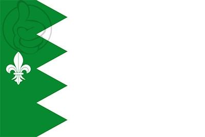 Bandera Puebla de Lillo