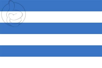 Bandera Tallin