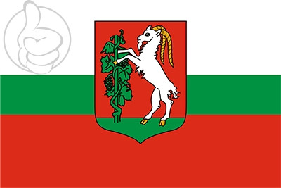 Bandera Lublin