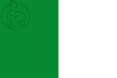Bandera Ixelles
