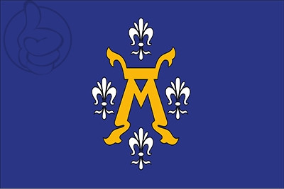 Bandera Turku
