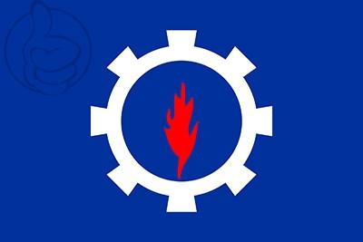Bandera Suez