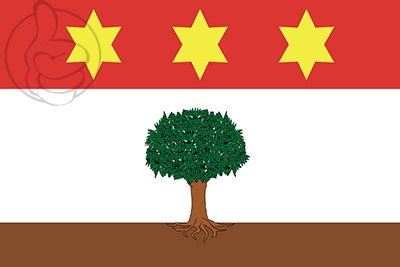 Bandera Zebbug