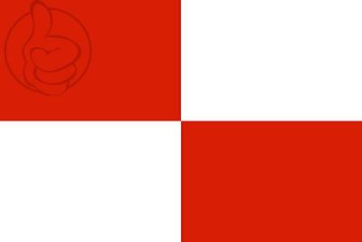 Bandera Potosí