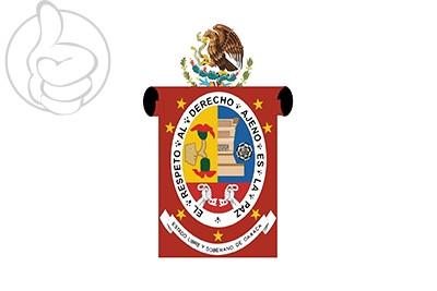 Bandera Oaxaca