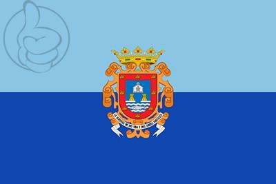 Bandera San Javier