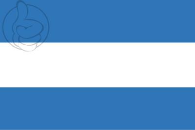 Bandera Argentina Personalizada