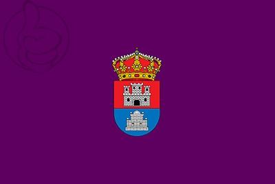 Bandera Guitiriz