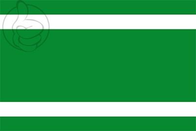 Bandera Ingenio