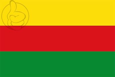 Bandera Villa del Rosario