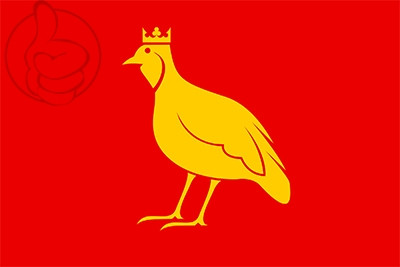 Bandera Aunis
