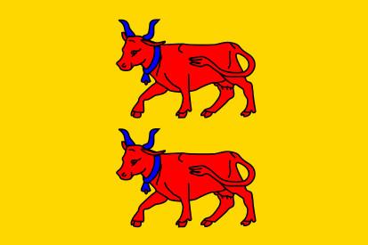 Bandera Béarn