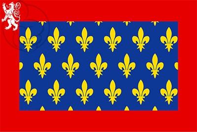 Bandera Maine Francia
