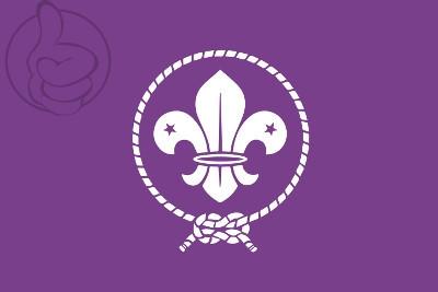 Bandera Scouts
