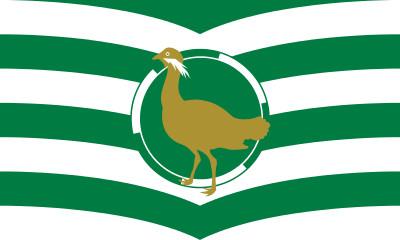 Bandera Wiltshire