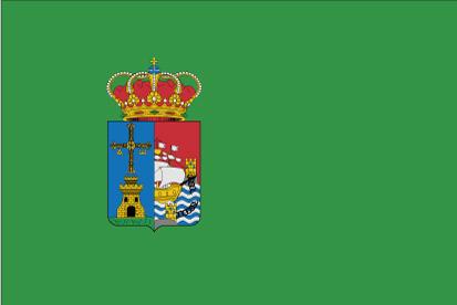 Bandera Castrillón C/E