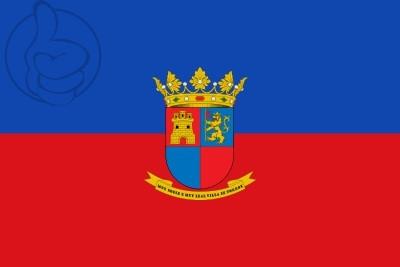 Bandera Torrox