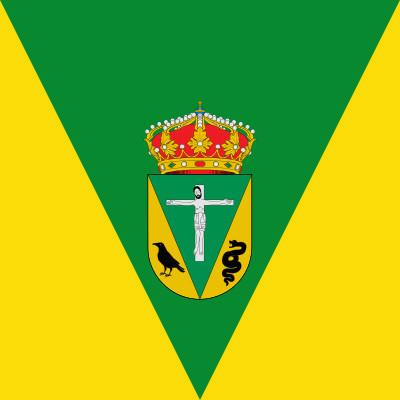 Bandera San Vicente de Arévalo