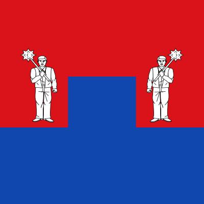 Bandera Castil de Peones