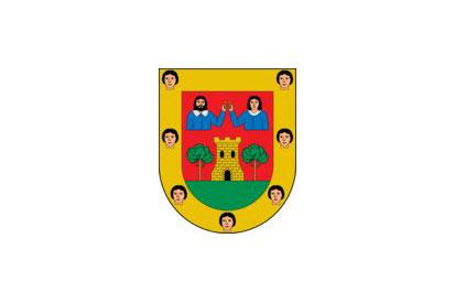 Bandera Salas de los Infantes