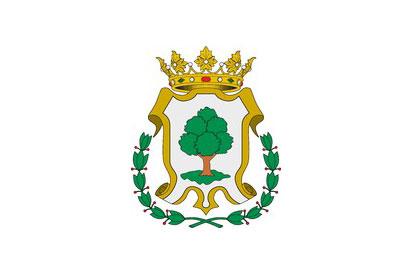 Bandera Azuébar