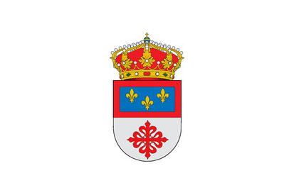 Bandera Villanueva de San Carlos