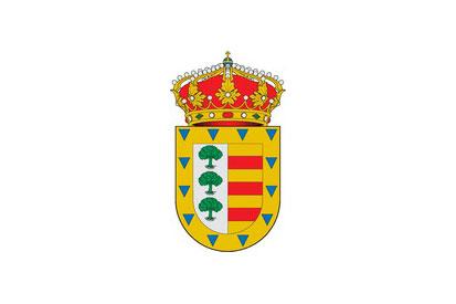 Bandera Huelves