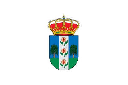 Bandera Chauchina