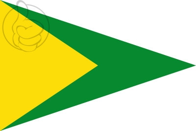 Bandera Collsuspina